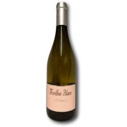 MORILLON vin blanc Carrel