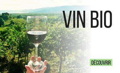 Les vins Bio de la cave VINSOLITE
