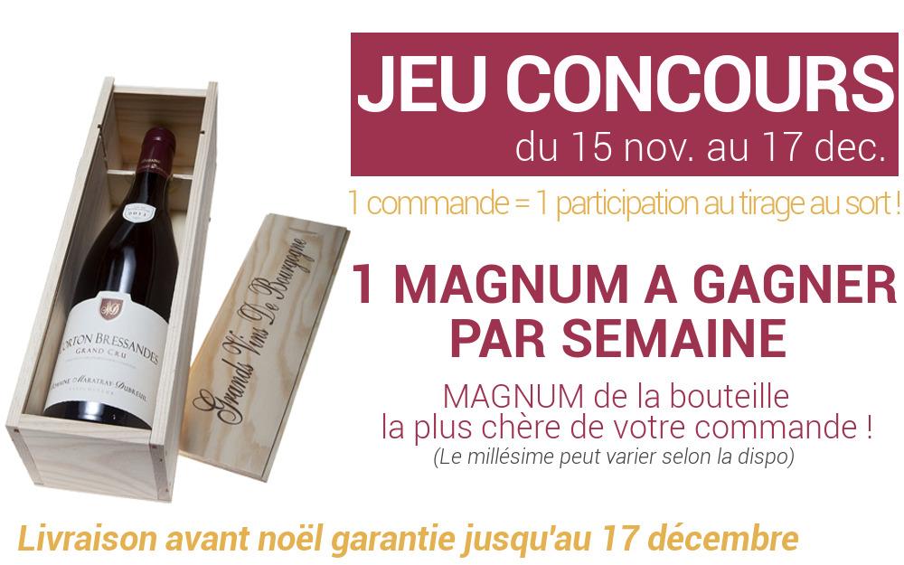 Concours Magnum de noël Vinsolite
